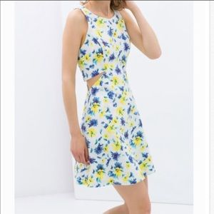 Zara cut out floral A line dress w/ pockets! 💙🌼